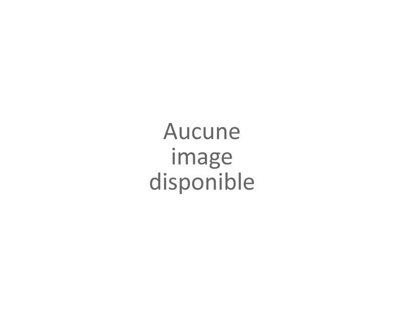 LS Maquettes (Louis Surbier )